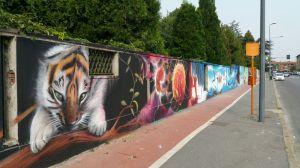 murales-quarto-oggiaro4